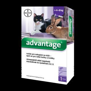 Advantage 80 10% pro kočky nad 4 kg 1x0,8ml