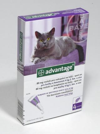 Advantage spot-on kočka 4kg a více