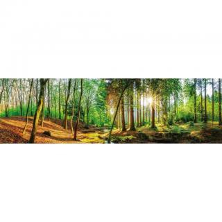 AKRYLOVÝ SKLENĚNÝ OBRAZ, krajina & příroda, 50/180/1,70 cm - vícebarevná 50/180/1,70