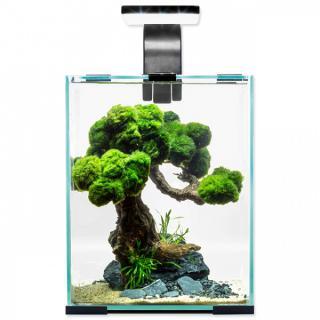 Akvárium aquael shrimp smart day & night 10l černé