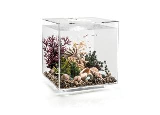 Akvárium BIORB CUBE MCR transparent 60l