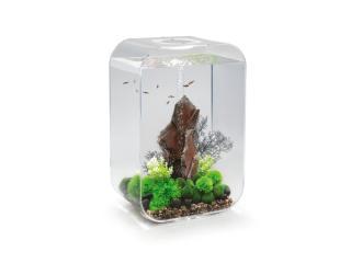 Akvárium BIORB LIFE MCR clear 60l