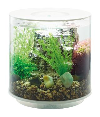 Akvárium Biorb TUBE LED bílé 15l