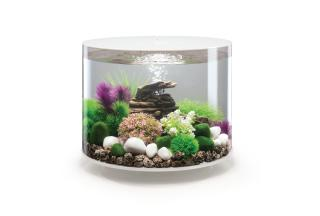 Akvárium BIORB TUBE MCR bílé 35l