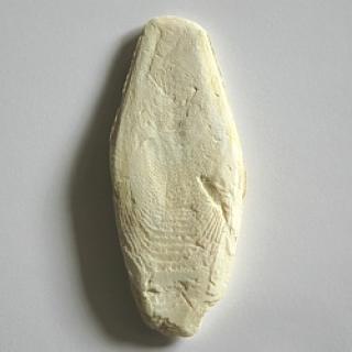APETIT Sépiová kost 12cm