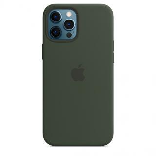 Apple silikonový kryt s MagSafe Apple iPhone 12 Pro Max cyprus green