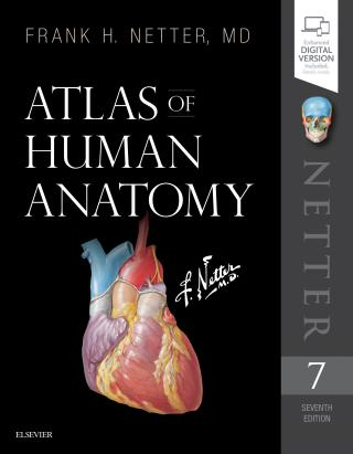 Atlas of Human Anatomy  - Netter