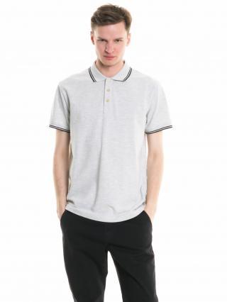 Big Star Mans Shortsleeve Polo T-shirt 154395 Light -984 pánské Grey S