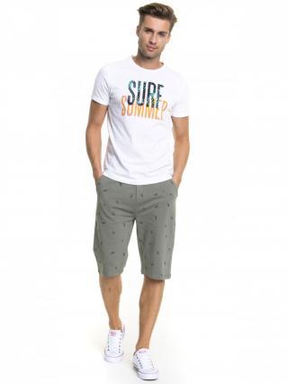 Big Star Mans Shortsleeve T-shirt 154362 -110 pánské White XXL