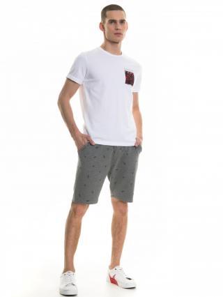 Big Star Mans Shortsleeve T-shirt 154364 -110 pánské White XL