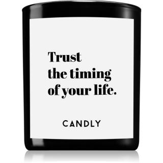 Candly & Co. Trust the timing vonná svíčka 250 g 250 g