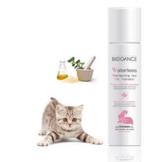 Cosmos Šampón - WATERLESS SHAMPOO FOR CATS