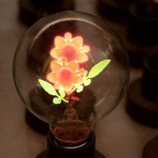 Dekorativní žárovka s obrázkem uvnitř - 4 varianty Typ: Květina