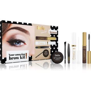 Delia Cosmetics Eyebrow Expert Brown dárková sada V.  pro ženy dámské