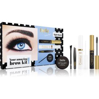 Delia Cosmetics Eyebrow Expert Light Black dárková sada na obočí II. dámské