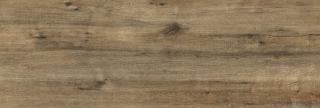 Dlažba Pastorelli Arké tortora 40x120 cm mat P009823 hnědá tortora