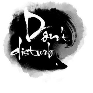 Dont Disturb (PC) DIGITAL