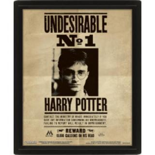 EPEE Czech - 3D obraz Harry Potter - Sirius