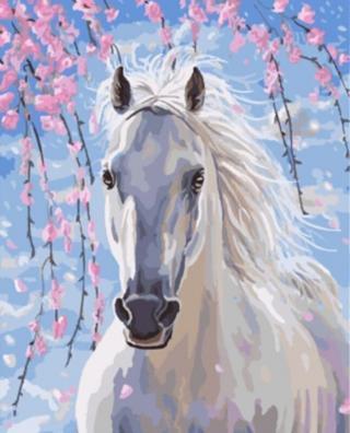 Gaira Bílý kůň M991642 40 x 50 cm