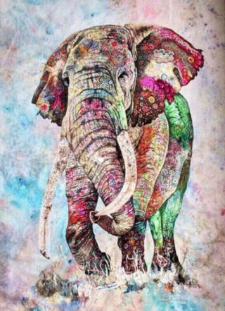 Gaira Elephant M991955 40 x 50 cm