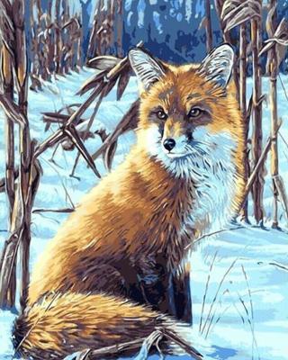 Gaira Fox M1641 40 x 50 cm