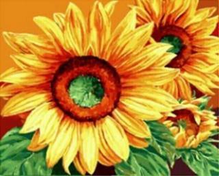 Gaira Slunečnice M991819 40 x 50 cm