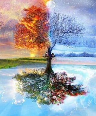 Gaira Strom ročních období M11801 40 x 50 cm