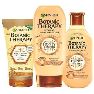 GARNIER Botanic Therapy Honey Set