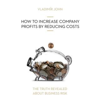 HOW TO INCREASE COMPANY PROFITS BY REDUCING COSTS