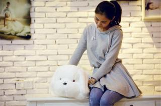 Kvalitní plyšový svítící pejsek 50 cm - 3 barvy Barva: bílá