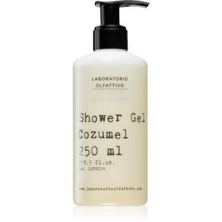 Laboratorio Olfattivo Cozumel parfémovaný sprchový gel unisex 250 ml 250 ml