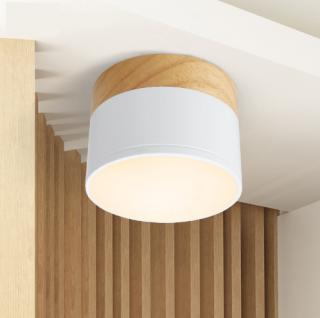 LED stropní kulaté světlo