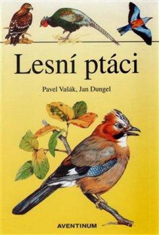 Lesní ptáci - Hrabák Rudolf