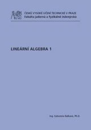 Lineární algebra 1 - Dvořáková Ľubomíra