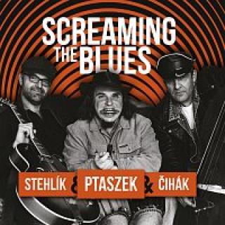 Matěj Ptaszek, Jan Stehlík, Jan Čihák – Screaming the Blues CD
