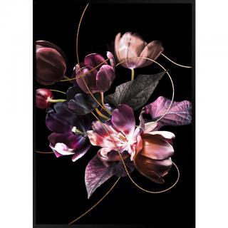 Monee OBRAZ NA PLÁTNĚ, květiny, 50/70 cm - černá, fialová 50/70
