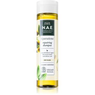 N.A.E. Riparazione regenerační šampon pro suché vlasy 250 ml dámské 250 ml