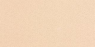 Obklad Rako Fresh R béžová 20x40 cm, lesk WATMB081.1 béžová béžová