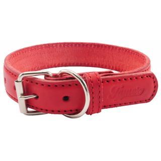Obojek tamer 4cm/65cm červený