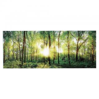 OBRAZ SKLENĚNÝ, krajina & příroda, 125/50 cm, - vícebarevná 125/50