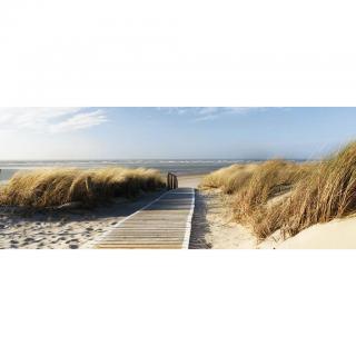 OBRAZ SKLENĚNÝ, pláž & moře, 50/125/1,40 cm - vícebarevná 50/125/1,40