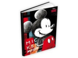 Památník MFP Disney Mickey