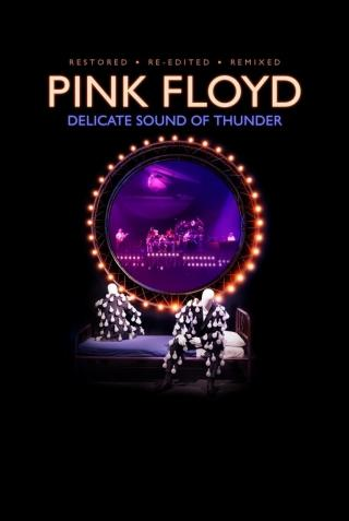 Pink Floyd Delicate Sound Of Thunder