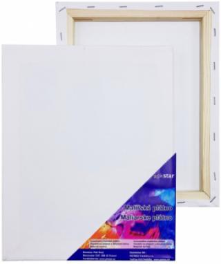 Plátno malířské 15x20cm