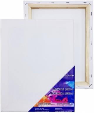 Plátno malířské 24x30cm