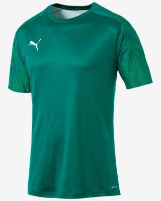 Puma Cup Training Triko Zelená Vícebarevná pánské L