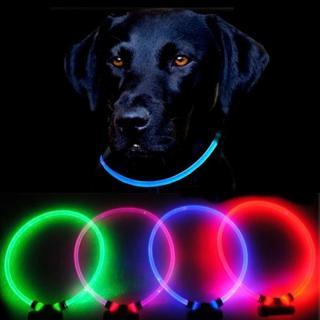 Reedog Full Light USB dobíjecí svítící obojek pro psy a kočky - červená  M