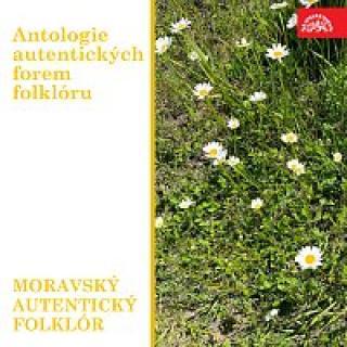 Různí interpreti – Antologie autentických forem folklóru. Moravský autentický folklór.