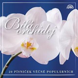Různí interpreti – Bílá orchidej 20 písniček věčně populárních CD