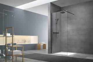 Sprchová zástěna walk-in Walk-In / dveře 140 cm s profilem a zavětrováním Swiss Aqua Technologies Walk-in SATBWI140PRC černá